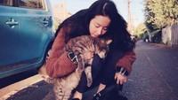 <p>Dalam kesehariannya, ternyata Li Yufei juga penyayang kucing lho, Bunda. Keren banget ya. (Foto: Instagram @yifei_cc)</p>