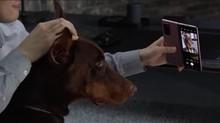 Kebebasan Berkreasi dengan Samsung Galaxy Z Fold2