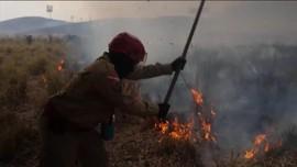 VIDEO: Hutan Amazon Terbakar