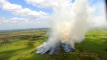 LSM Desak Pemerintah Tetap Cegah Kebakaran Hutan saat Corona
