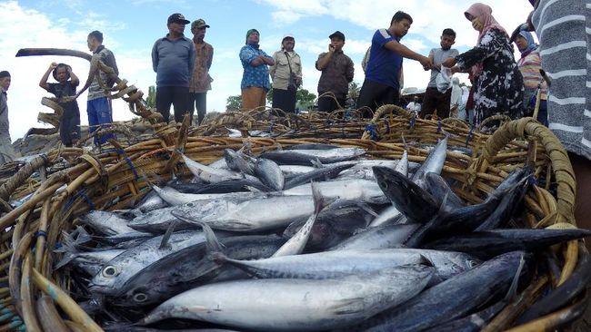 Kementerian KKP memaparkan realisasi investasi di sektor kelautan dan perikanan di Indonesia didominasi oleh China, jika dibandingkan negara Asia Timur lain.