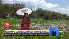 VIDEO: Kalinampu, Suasana Jepang di Tepi Sungai Yogyakarta