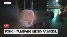 VIDEO: Pohon Tumbang Timpa Mobil, Plafon Gedung KPK Jebol