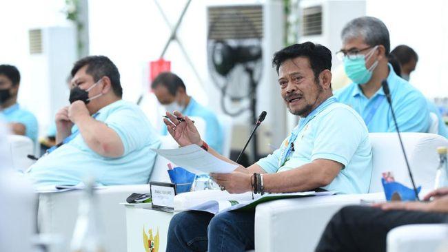 Menurut Mentan Syahrul Yasin Limpo, di Musim Tanam II 87 persen lahan sudah ditanami, dengan perkiraan menghasilkan sekitar 15 juta lebih ton beras.