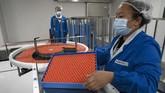 Perusahaan obat asal China, Sinovac, siap mendistribusikan jutaan dosis vaksin Virus Corona buatannya pada 2021 jika tahap pengujian dan perizinan bisa dilalui.