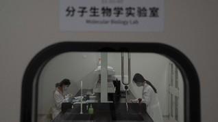 Bio Farma Bantah Vaksin China di RI Lebih Mahal dari Brasil