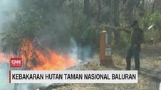 VIDEO: Kebakaran Hutan Taman Nasional Baluran