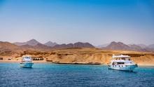 Lama Tak Acuh, Kini Mesir Beri Perhatian ke Taman Nasional