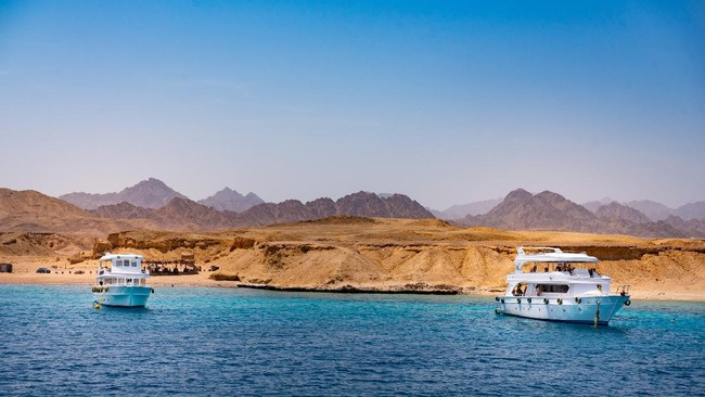 >Lama Tak Acuh, Kini Mesir Beri Perhatian ke Taman Nasional