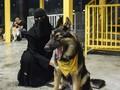 Arab Saudi Kini Punya Kafe Anjing