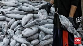 FOTO: Sentra Penjualan Ikan Mulai Lesu Saat Pandemi Corona