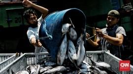 Pemerintah Kembangkan Lumbung Ikan Nasional di Maluku