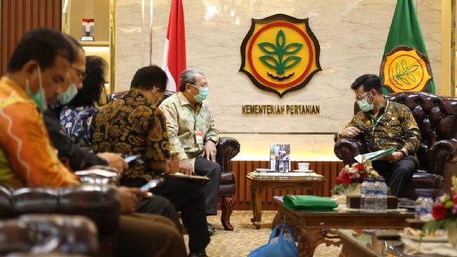 Dekopi menjajaki kerja sama dengan Kementerian Pertanian dalam memajukan kopi lokal dan menyejahterakan petani.