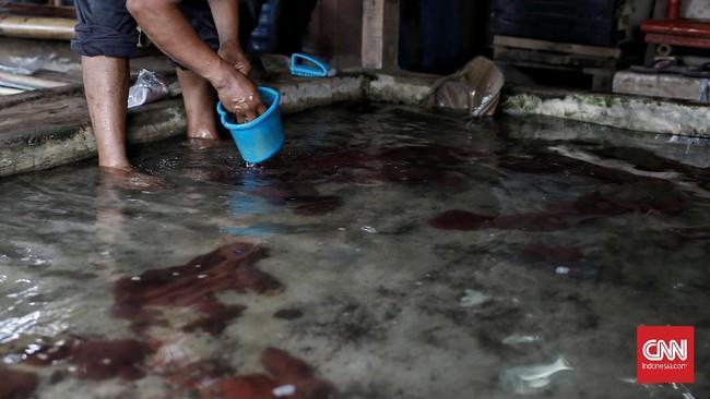 Foto Asa Peternak Cacing Sutra Tangerang Di Tengah Pandemi