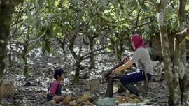 Sinopsis Mountain Song, Lagu di Balik Perjalanan Gimba