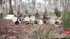 VIDEO: Sembuh dari Kanker, Tasmania Devil Dilepas Liarkan