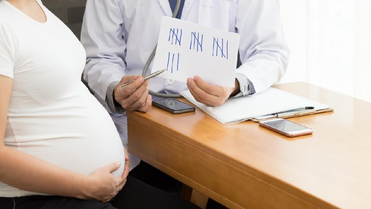 Pregnant woman counting weekly by doctor