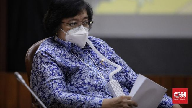 Greenpeace Indonesia menuding Menteri LHK Siti Nurbaya melanggar aturan dalam pelepasan izin kawasan hutan untuk konsesi sawit di wilayah Papua dan Papua Barat.