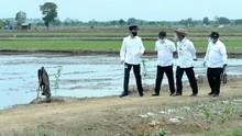 Jokowi Terbang ke Sumut Tinjau Lumbung Pangan Modern