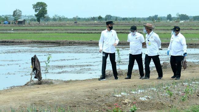 Presiden Jokowi juga dijadwalkan sertifikat hak tanah kepada masyarakat di Stadion Simangaronsang, Kecamatan Doloksanggul.