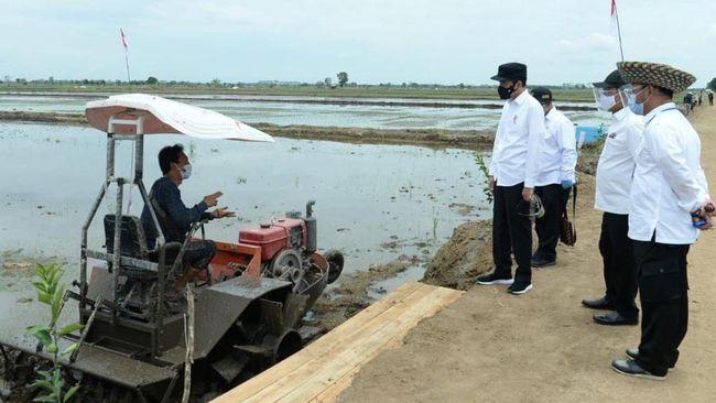 Presiden Jokowi terbang ke NTT untuk meninjau food estate di Desa Makata Keri, Kecamatan Katiku Tana, Kabupaten Sumba Tengah.
