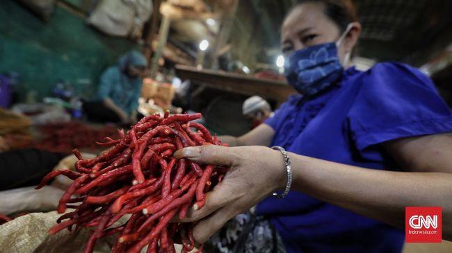 Harga cabai rawit merah meroket naik hingga 14,66 persen dalam sepekan terakhir menjadi rata-rata Rp48.500 per kilogram.