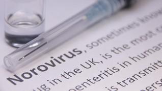 Ada di Indonesia, Norovirus Jadi Penyebab Keracunan Makanan