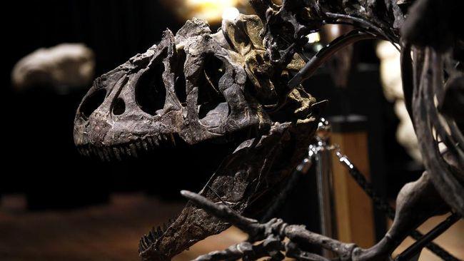 Ahli Paleontologi Meksiko menemukan dinosaurus herbivora besar spesies baru yang hidup 73 juta tahun lalu.