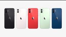 Apple Hentikan 12 mini dan Bocoran iPhone 12s September Nanti