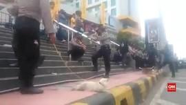 VIDEO: Viral Polisi Bawa Kucing Pelacak