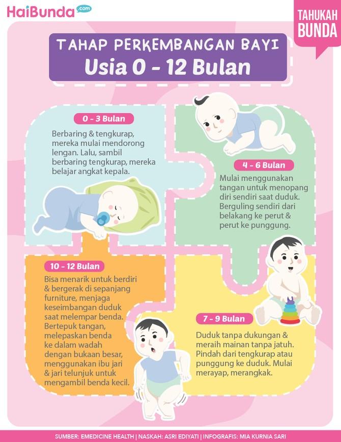 Milestone bayi 0 - 12 bulan.