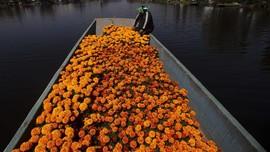 NYALANG: Semerbak Wangi Bunga-bunga Harapan