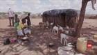 VIDEO: Peringatan Hari Pangan di Saat Kelaparan Dunia Meroket