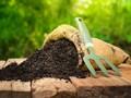 Cara Mudah Membuat Pupuk Kompos dari Sisa Makanan