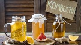 Kombucha, Minuman Fermentasi Kaya Manfaat