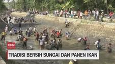 VIDEO: Tradisi Bersih Sungai dan Panen Ikan