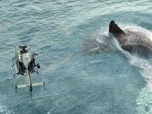 7 Film Tentang Makhluk Laut dari Lucu hingga Mengerikan