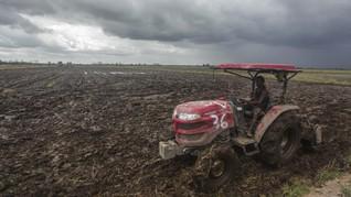 Luhut Sebut Pembukaan Lahan Food Estate di Sumut Capai 200 Ha