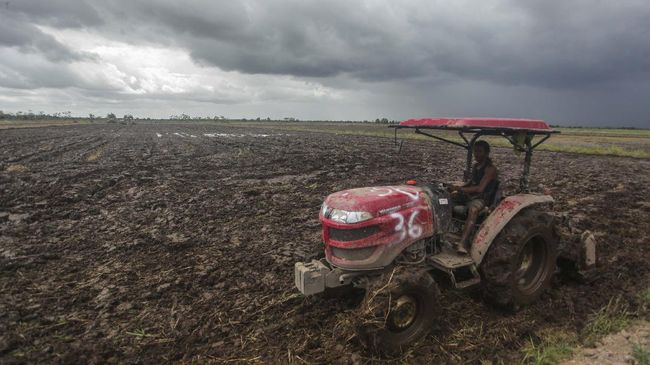 Pegiat lingkungan mengkritik peraturan soal izin pembangunan food estate di kawasan hutan lindung yang disebut menabrak UU Kehutanan sampai mengancam hutan.