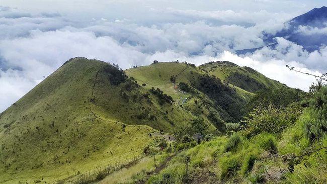 Boyolali dikenal sebagai produsen susu terbesar di Pulau Jawa. Julukan 'Nieuw Zeeland van Java' alias 'Selandia Baru di Pulau Jawa' lalu disematkan.