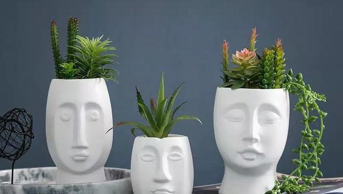 Hobi Menanam? Inilah Olshop di Shopee yang Jual Pot Keramik Minimalis