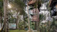 7 Hotel Bergaya Rumah Pohon untuk Staycation
