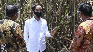 Jokowi: Baru 8 Juta UMKM yang Terintegrasi Teknologi Digital