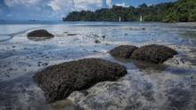 5 Tempat Wisata Menawan di Pulau Penjara Nusakambangan