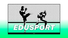 Edusports: Arti Pay Per View UFC