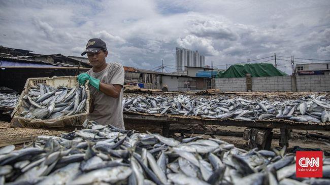 KKP mengungkap impor produk perikanan mencapai 42 ribu ton dengan nilai US$65,34 juta atau setara Rp942 miliar pada Januari-Februari 2021.