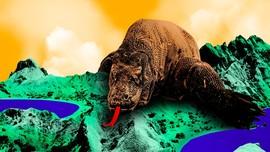 INFOGRAFIS: Fakta Menarik Taman Nasional Komodo