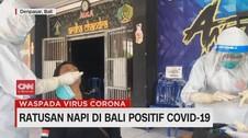 VIDEO: Ratusan Napi di Lapas Kerobokan Bali Positif Covid-19