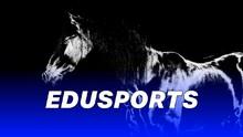 Edusports: Sejarah Julukan Kuda Hitam di Olahraga