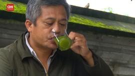 VIDEO: Kedondong Hutan, Obat Sakit Gigi sampai Darah Tinggi